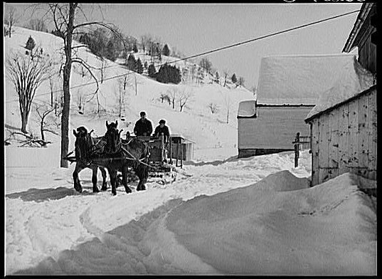 people in a horse drawn carriage in the snow