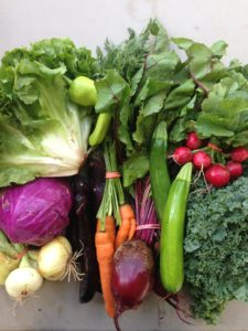 A Premium share from Early Morning Farm - $32/week (10-12 items). Photographer: Emma Lecarie