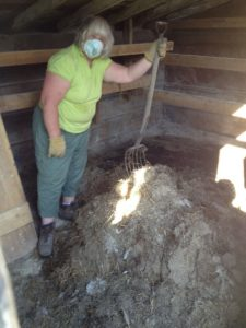 Elaine cleaning out old chicken pen