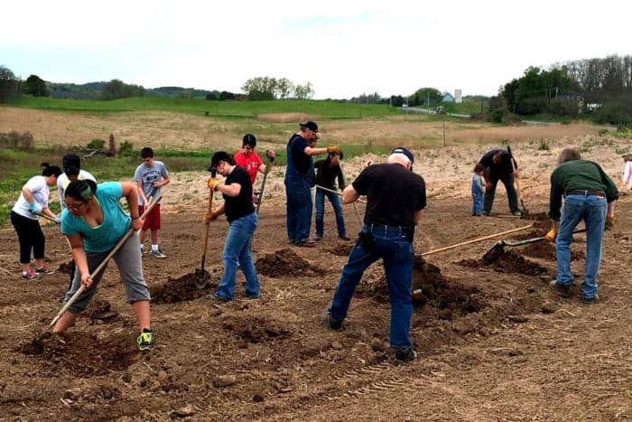 eleven people in a field digging holes