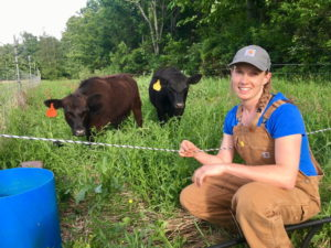 person stands in front of a fence, two cows behind