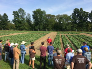 visitors gather in front of researcher at reduced tillage field day