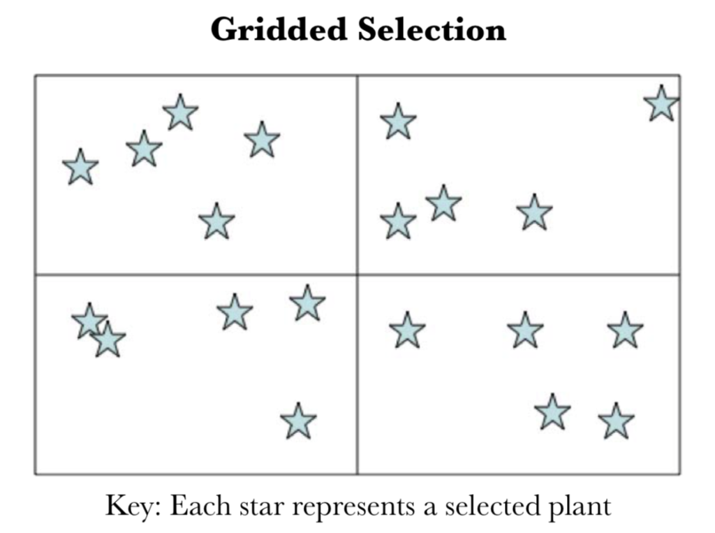 sequential elimination family selection
