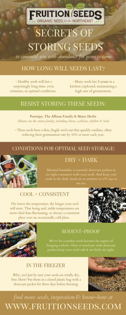 Infographic – If you'd like your own copy to download, hop on over to the blog post, How Long Do Seeds Last? atwww.fruitionseeds.com. Courtesy of Petra Page-Mann / Fruition Seeds
