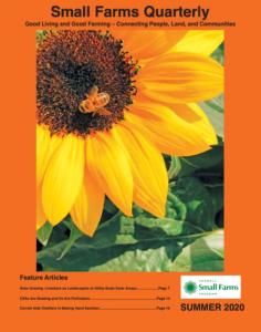 Summer 2020 Quarterly Cover, featuring an image of a flower with a honeybee