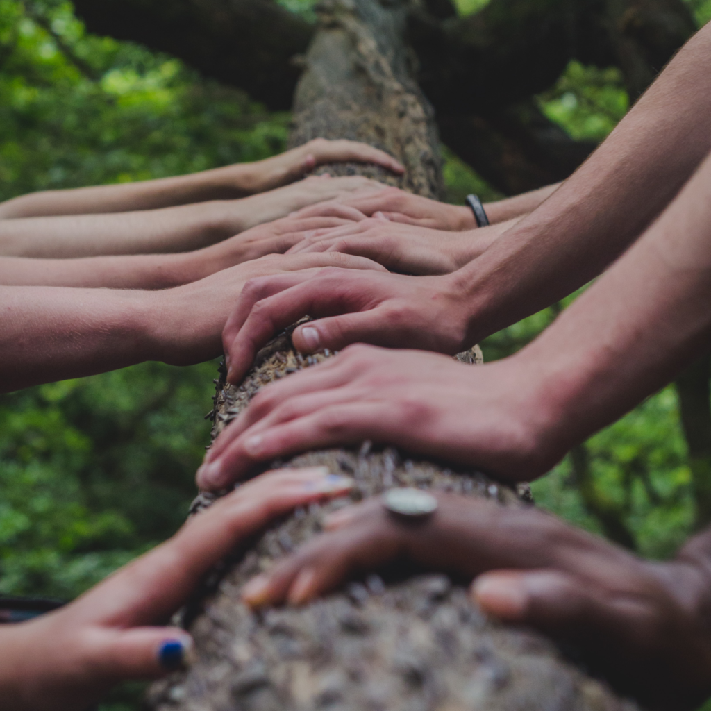 hands-tree-team-reconnecting-unsplash