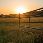 farm-field-gate-sunrise-unsplash